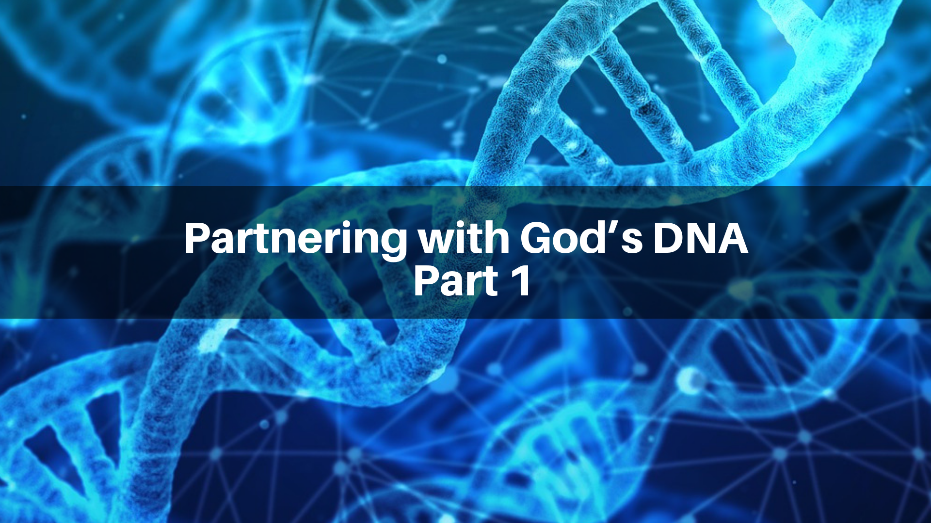 Partnering with God's DNA, Part 1 - 11/25/2018