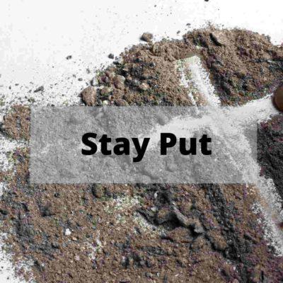 Stay Put