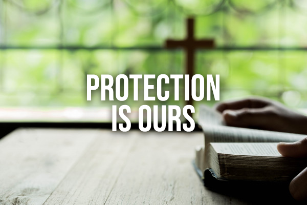 Sunday Snapshot: Divine Protection is Ours 3/29/20